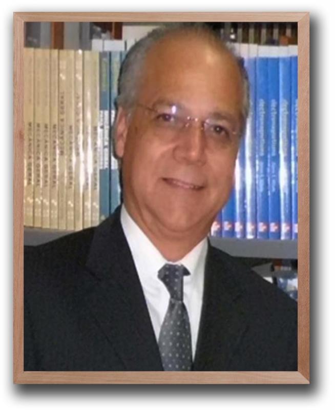 Prof. Luiz Alberto Alves Dos Santos