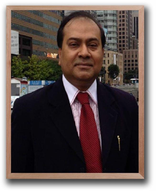 Professor Shibli Rubayat Ul Islam