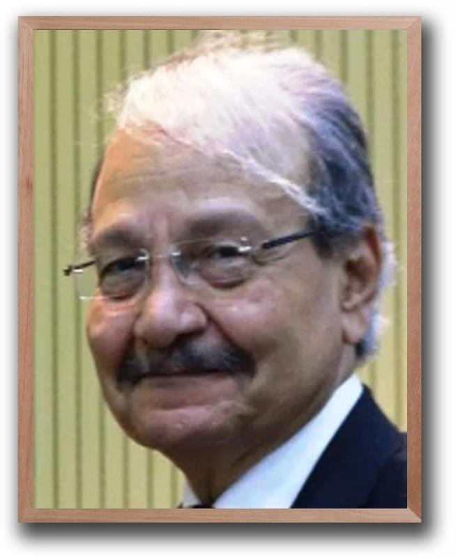 Prof Dr M S S El Namaki